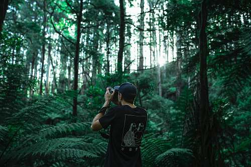 nature person taking photo using black camera under green leaf trees at daytime tree