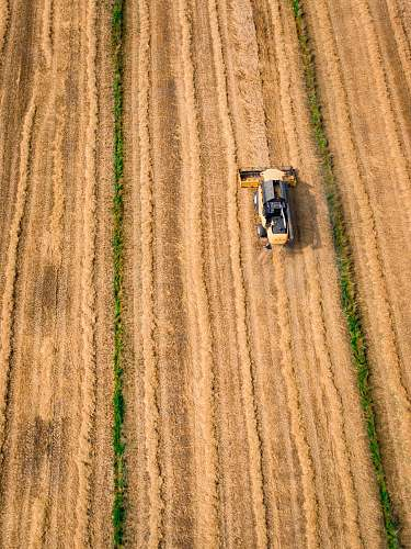wheat aerial photography of yellow cultivator on brown field drone view