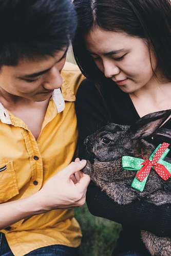 person man and woman holding rabbit animal