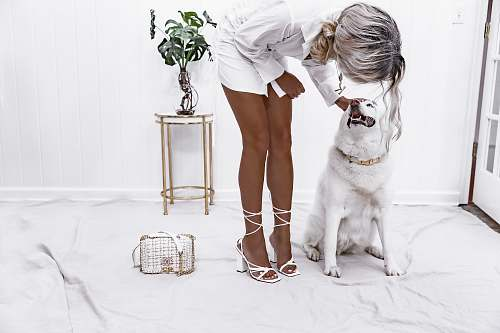 person woman holding dog's head apparel