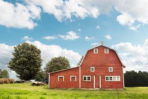 farm brown wooden house barn