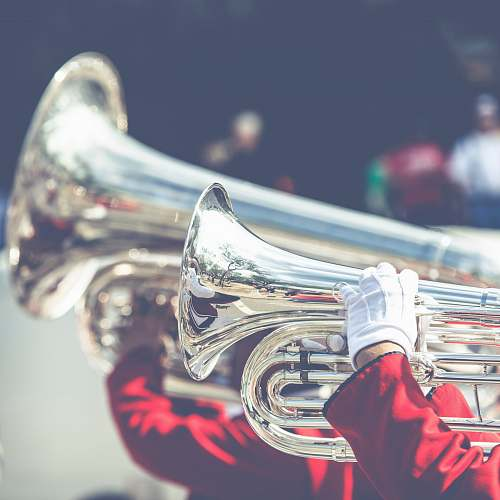 music close up photo of person playing horn instrument horn