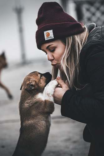 photo human woman about to kiss a tan puppy pet free for commercial use images