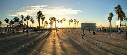 venice people playing basketball at court during sunset los angeles