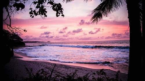 pink waves crashing through shore background