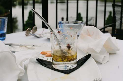 alcohol clear glass cup close-up photography beverage