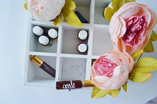flower several vials in white wooden organizer shelf dish