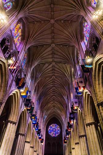 architecture low angle shot interior photography of cathedral with multicolored stained glass windows cathedral