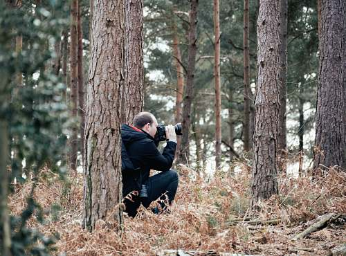photo person man taking picture in the woods using a DSLR camera photographer free for commercial use images