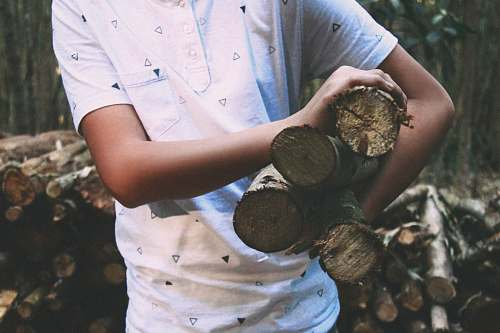 person person carrying wood log human