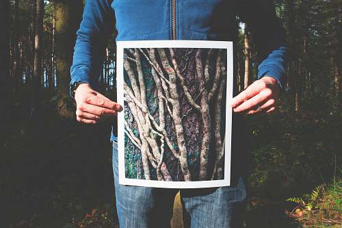trees person holding photo of roots human