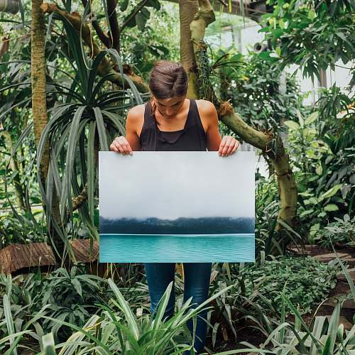 tree woman holding photo of tidal wave human