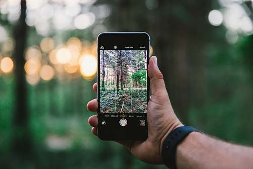 iphone selective focus photo of person taking photo of trees during daytime nature