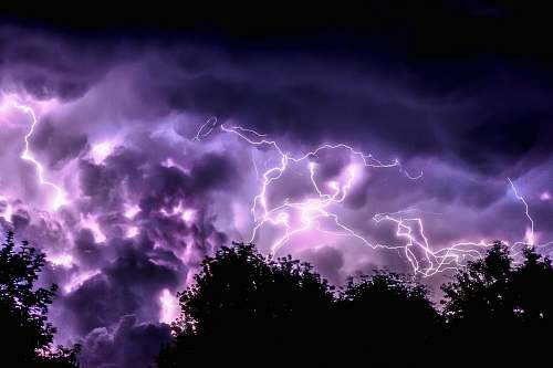 purple silhouette of trees and purple lightning thunderstorm