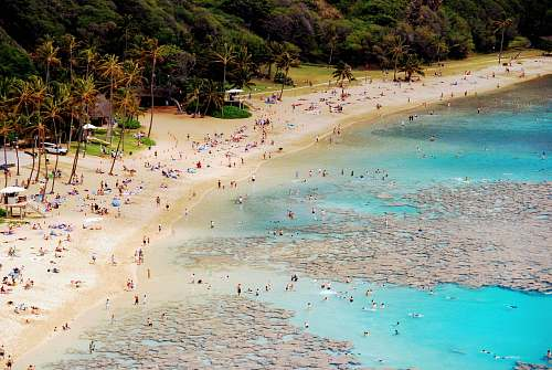 water aerial view of people on seashore nature