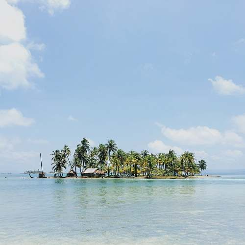 sea house near surrounded by coconut tree island