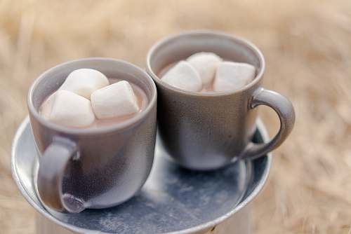 dessert two mugs of beverages and marshmallows hot chocolate