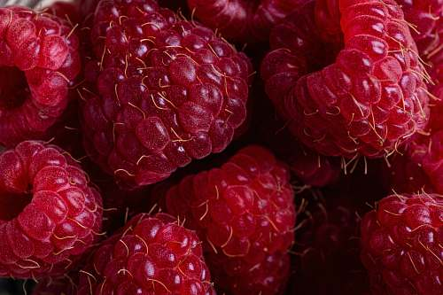 food selective focus photography of red raspberries raspberry