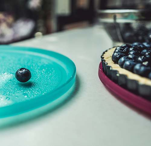 food blueberry on microwave plate blueberry