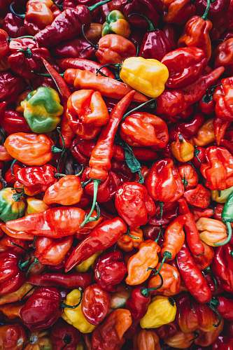 vegetable pile of chili pepper