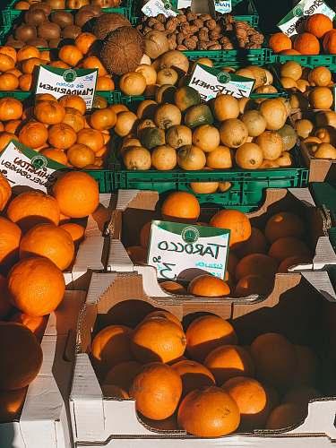 fruit orange fruits on black plastic crate citrus fruit