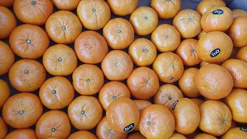 fruit orange fruits on white ceramic plate citrus fruit