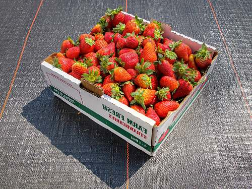 strawberry strawberries in white and green box food