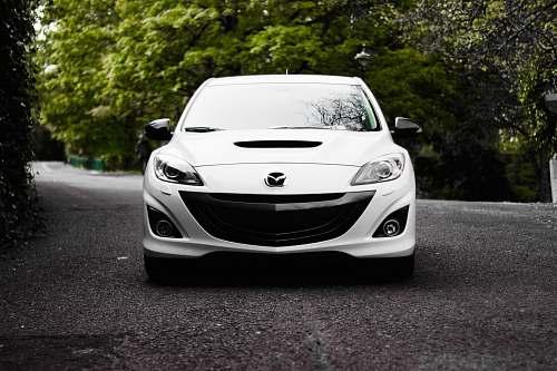 automobile white Mazda vehicle on road near tree vehicle