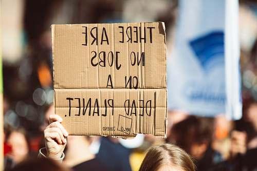 person perosn holding signage lorenzer platz