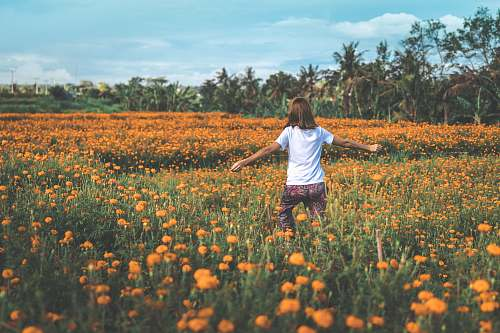 person woman standing on orange flower garden human