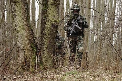 human man holding rifle near the tre military