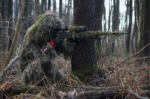 photo tree person holding green rifle shooting sniper free for commercial use images