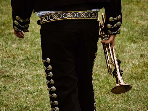 human close-up photography of person holding trombone musical instrument