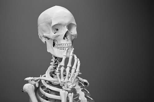 people greyscale photography of skeleton skeleton
