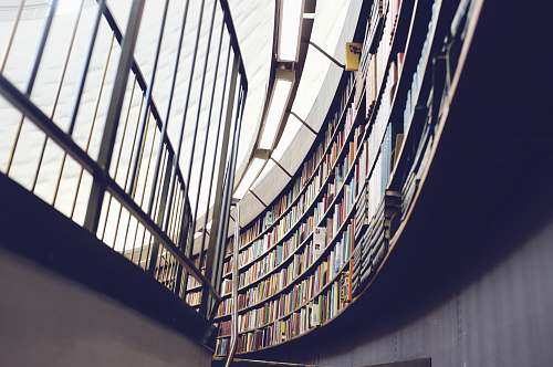 book architectural interior photo of library with books and shelf library