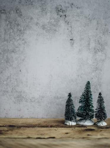 holiday three green pine tree miniature near gray concrete wall grey
