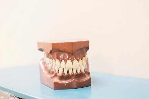 photo chocolate teeth denture on top of blue shelf dessert free for commercial use images