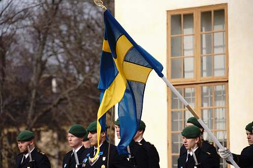 person flag of Sweden military
