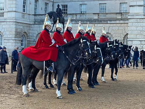 human knights riding on black horse during daytime animal