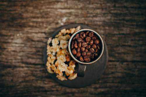 bean brown coffee beans on gray mug flora