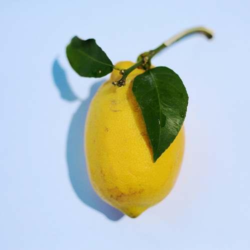 food yellow citrus fruit plant