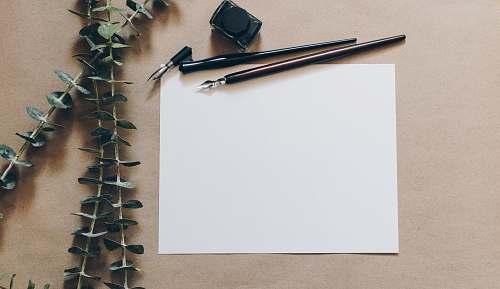 blank white printer paper beside pens paper