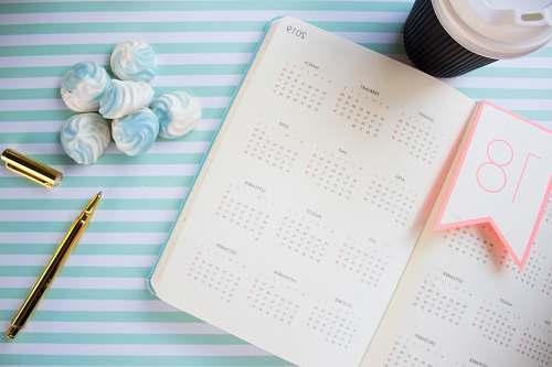 calendar 2019 calendar on white and teal surface text