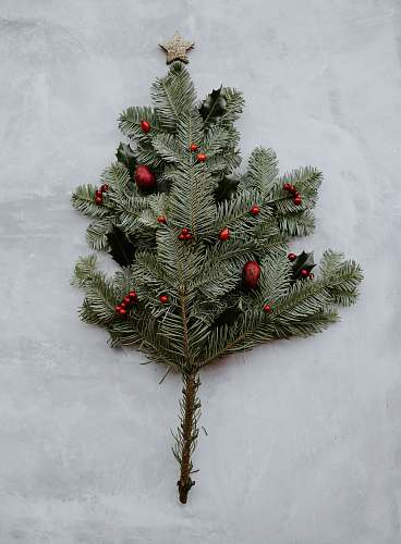 tree green pine leaves on gray surface ornament