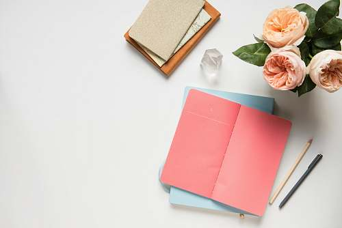 blossom pink covered book in top view photography flora