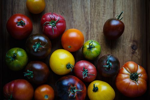 photo assorted-color tomatoes on brown wooden surface free for commercial use images