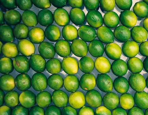 photo green lemons free for commercial use images