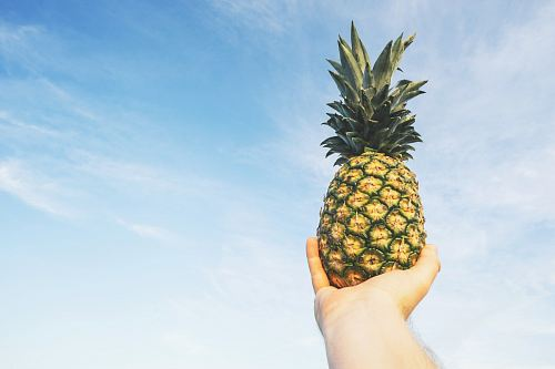 photo person holding pineapple fruit free for commercial use images