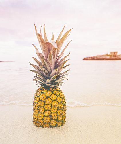 free for commercial use pineapple at the beach images