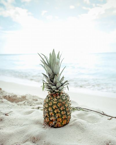 pineapple fruit on the sand